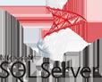 sql_server icon