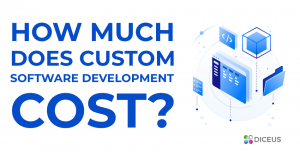 How much does software development cost? | Diceus