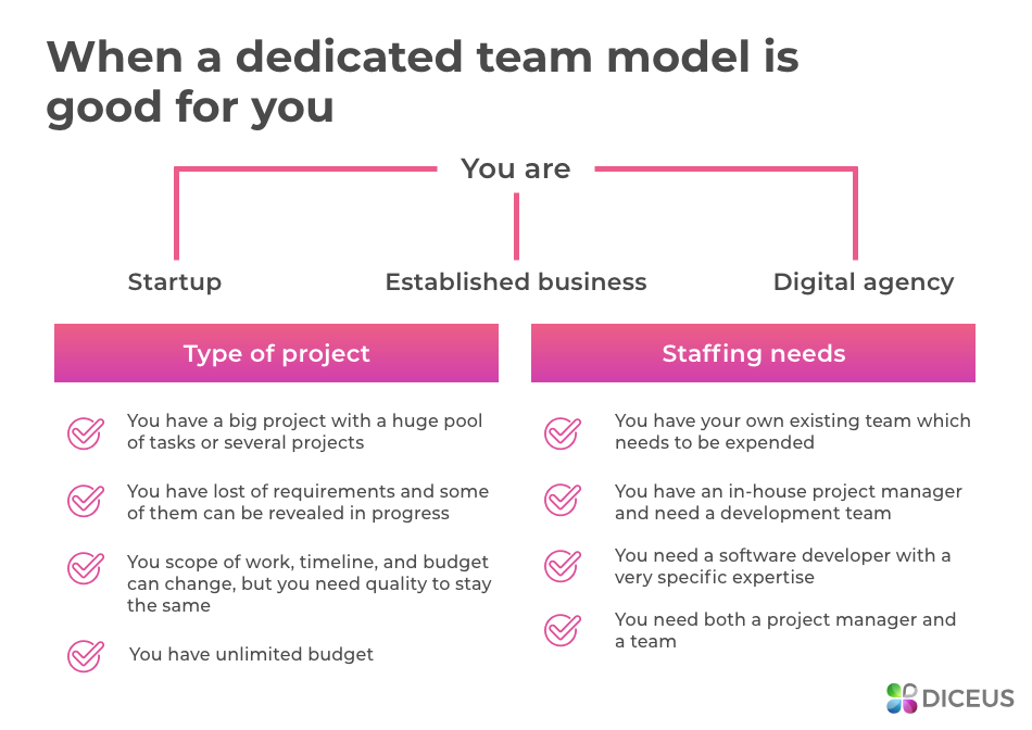 When you need a dedicated team | Diceus