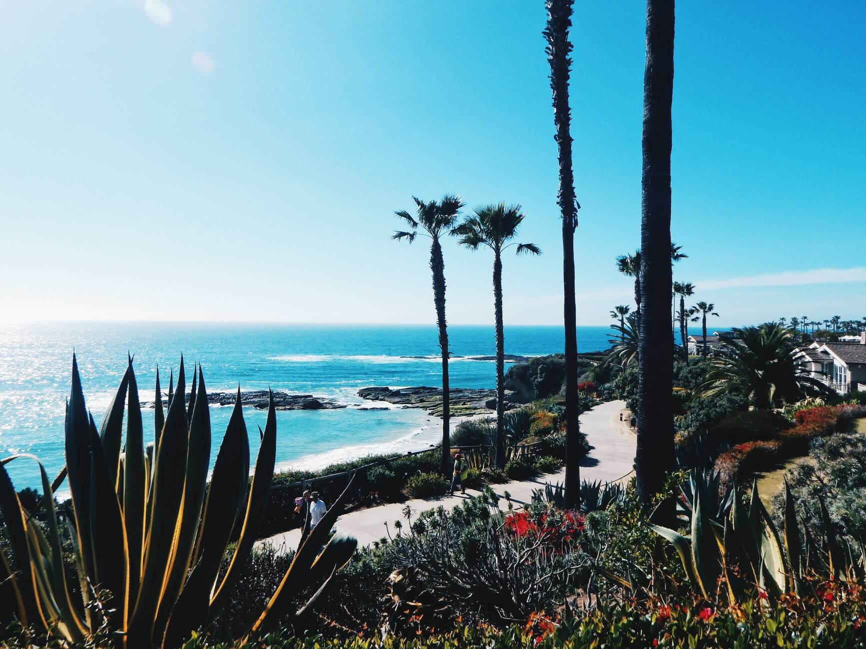 Top software companies in california You Should Know