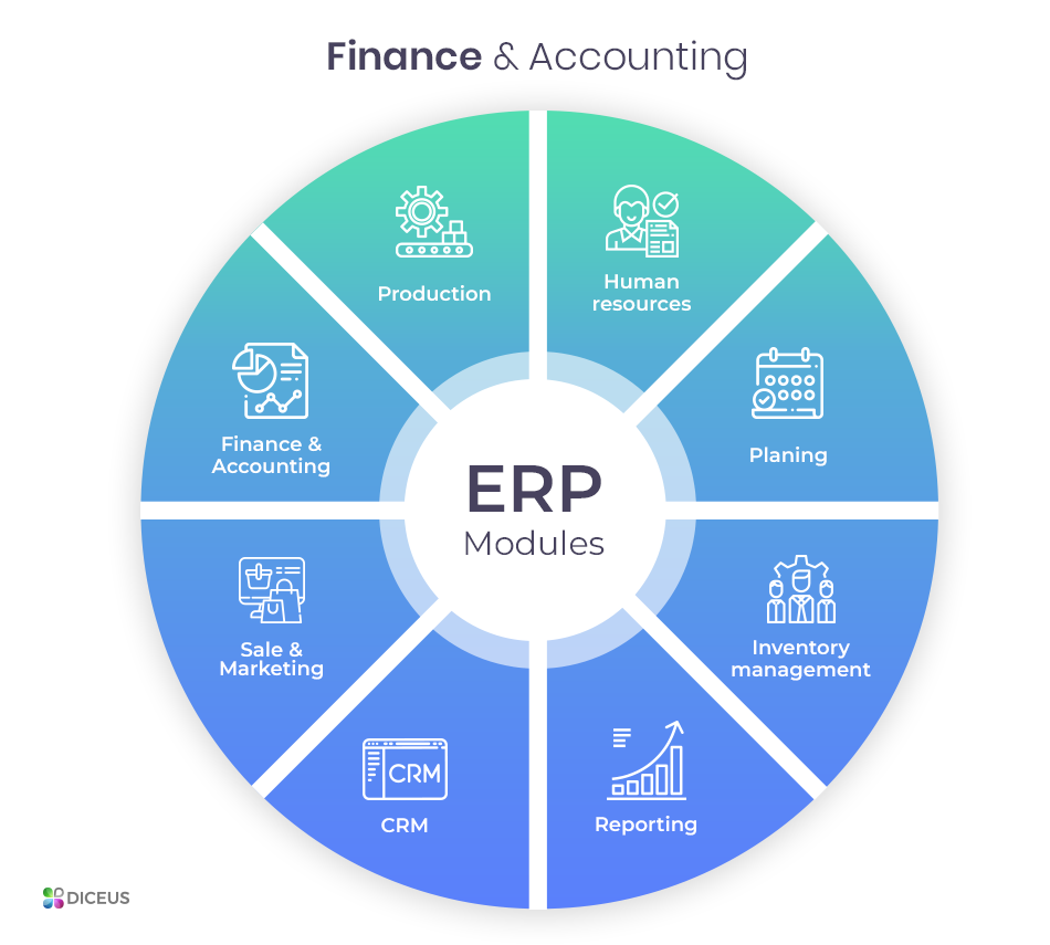 What does mean erp implementations ipo
