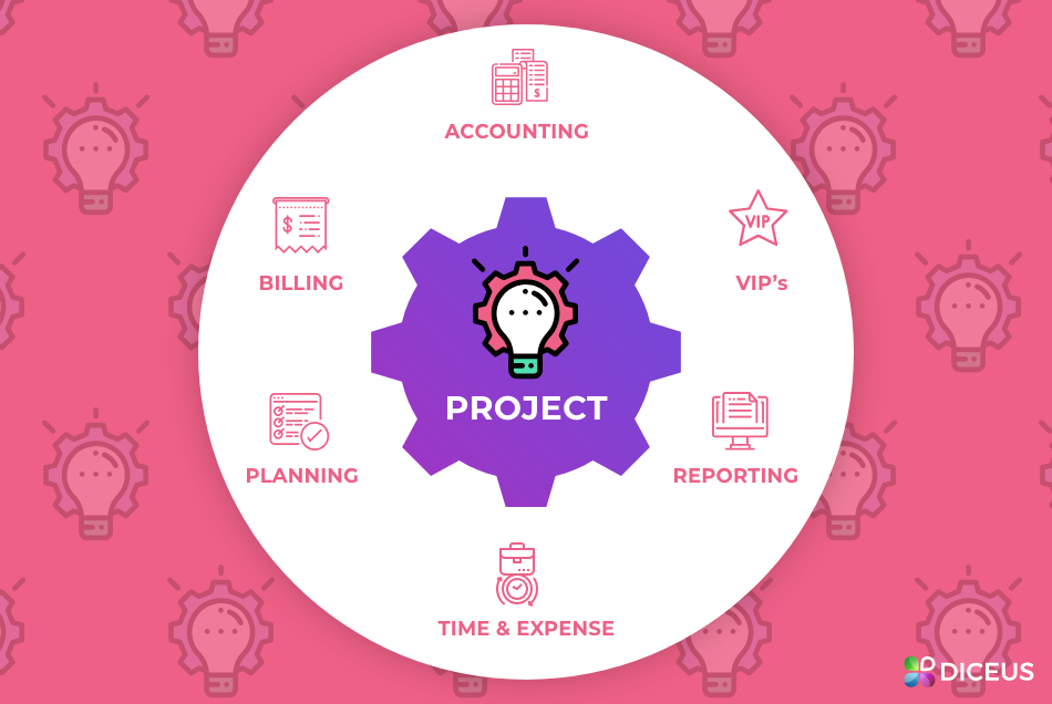 ERP Project | Diceus