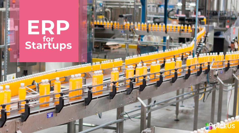ERP for Startups | Diceus