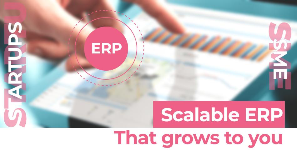 Scalable ERP software | Diceus