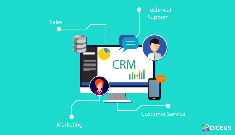 CRM System Development - Key Questions