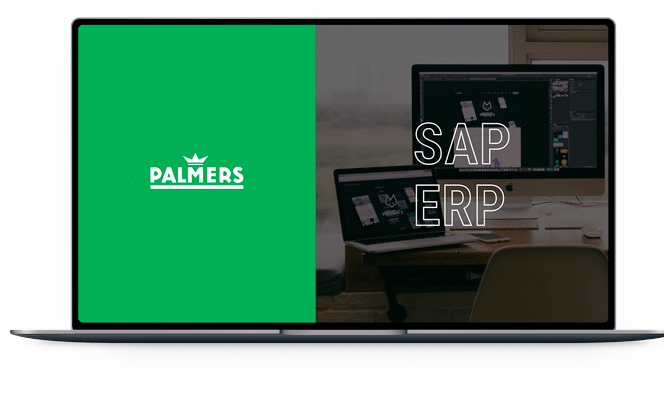 sap erp audit for palmers textl project overview