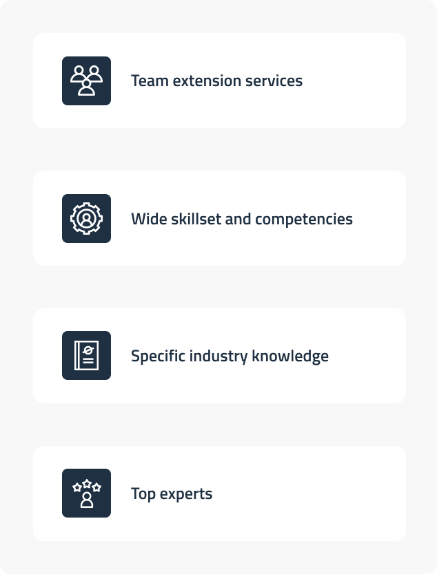 software team extension services 1
